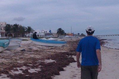 our walk into Progreso along the beach
