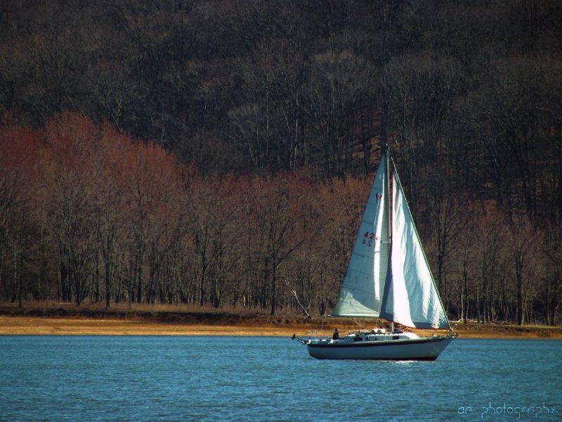 Lake Monroe's Sails