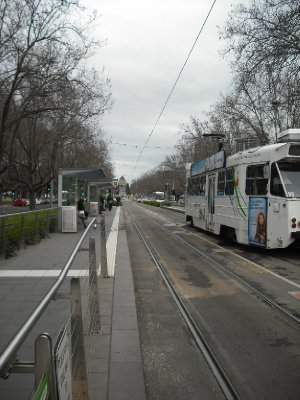 The trams of Melbourne