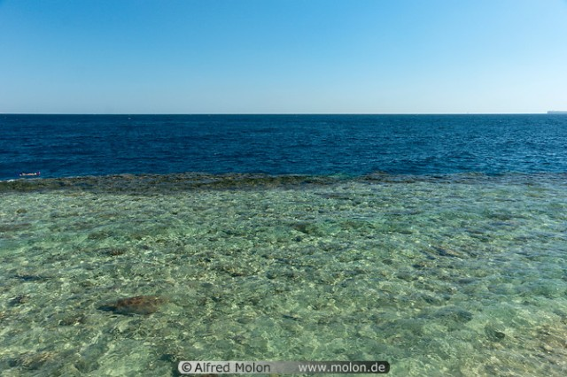 Red Sea  Crystal clear seawater