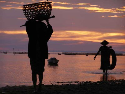 Sunset over Sea Weed Farmers - Nusa Lemboggan, Bali