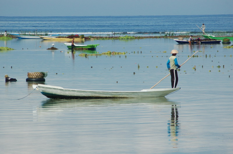 Seaweed Farmer Punting for Home on Nusa Lembongan - Bali, Indonesia