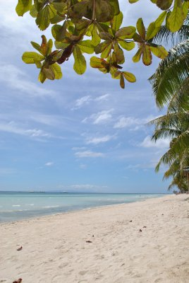 Beach in Panglao