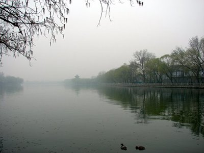 Misty_morn..ck_Lake.jpg