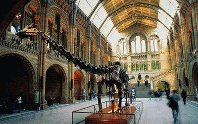 london_museum.jpg