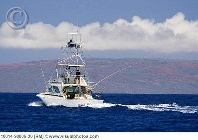 hawaii_mau..0006-30.jpg