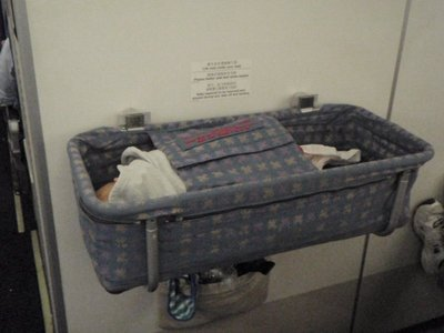Jasper in Bassinet on plane