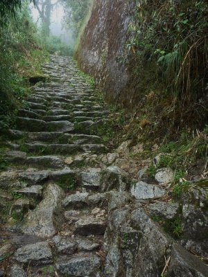 We walked on paths like this....the porters ran!