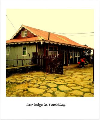 our lodge in Tumbling