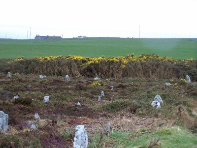 The Hill o Many Stanes at Clyth  - almost 200 small stones in this circle