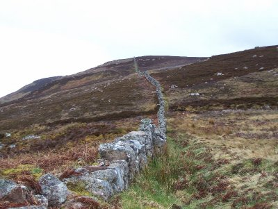 Stone wall over the heather at Badbea