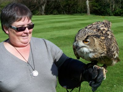 Dalhousie Castle falconry