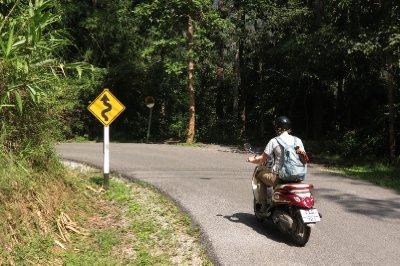The ubiquitous road sign
