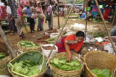 Betel nut wholesaler at market