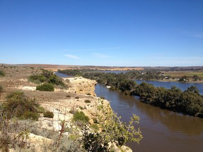 The banks of the Murray River near Walker Flat, SA