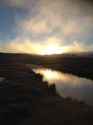 Vale Creek