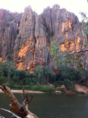 Cliffs of Windjana Gorge