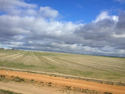 WA wheat belt