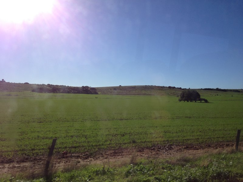 Farmland south of Kalbarri