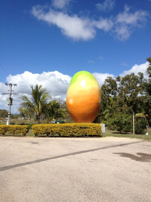 The Big Mango Bowen