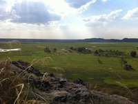Looking over the Kakadu wetlands