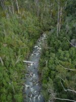 50m high as we cross the Pipers River