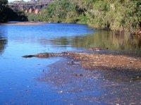 Fresh water croc, Windjana Gorge