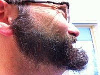 Holiday beard