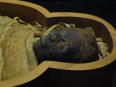 Vatican Mummy