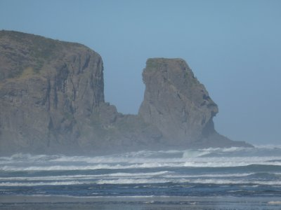 Bethells Beach, West Coast 3