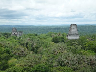 Clear View from Templo IV, Tikal