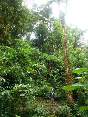 Monteverde Cloud Forest Reserve (8)
