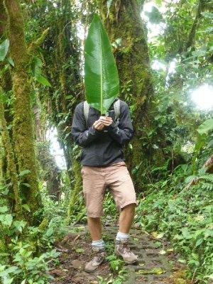 Monteverde Cloud Forest Reserve (31)