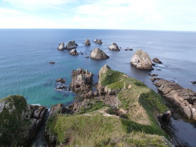 Nugget Point, Catlins