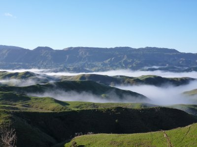 Misty view in the hills between Napier & Taupo