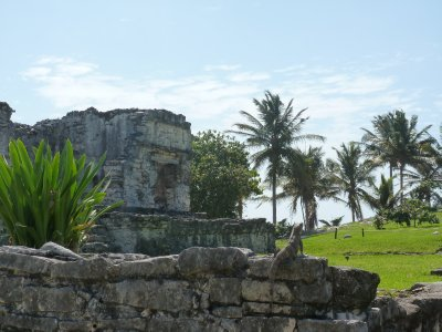 Tulum Ruins (15)