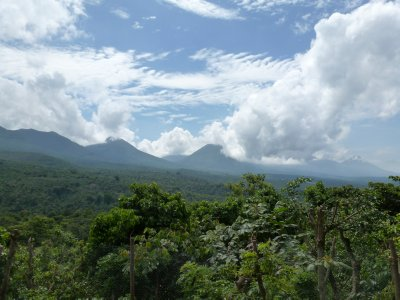 View from coffee tour guides house, Juayua
