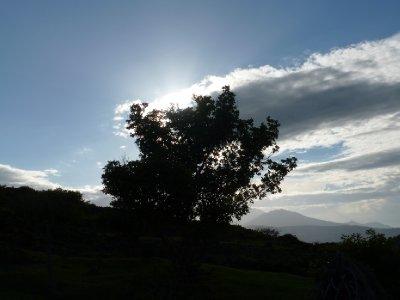 Volcan Telica (9)