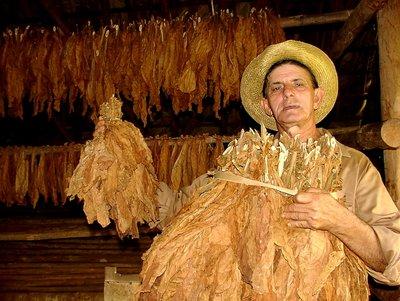 Vinales/Cuba