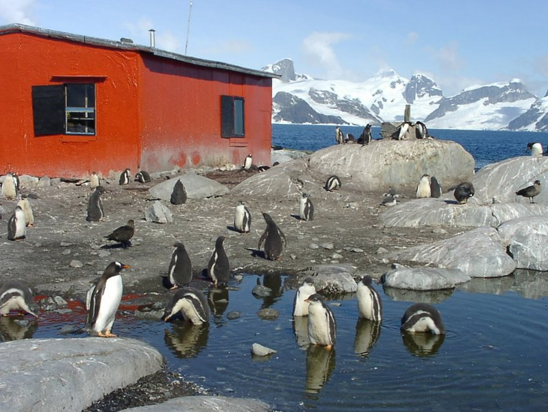 sunny day in Antarctica