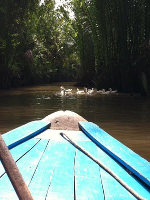 Mekong delta trip