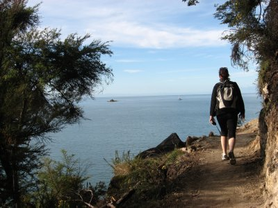 Abel Tasman Nat'l Park 7