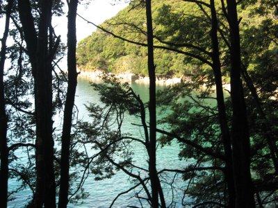 Abel Tasman Nat'l Park 4