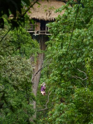 Leaving treehouse by zipline