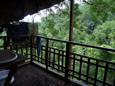 The treehouse bathroom - nothing between you and nature when showering