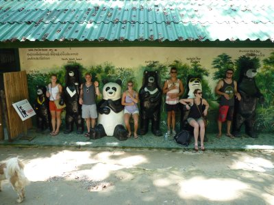 Bear Rescue Centre at Kuang Si waterfalls