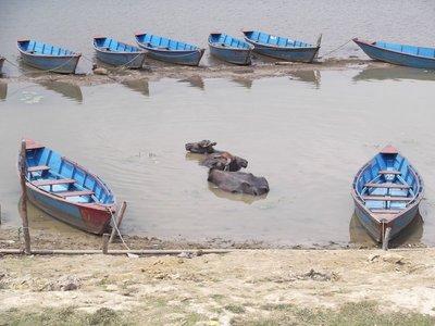Nepal_005_..ara_008.jpg