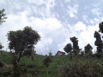 Nepal_009_..dha_020.jpg