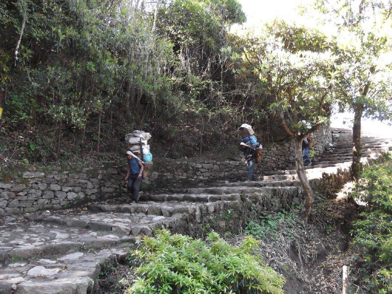 A Sherpa's work