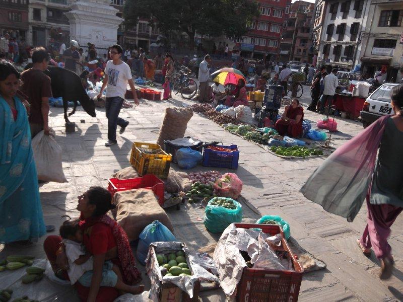 large_Nepal_006_..ndu_105.jpg